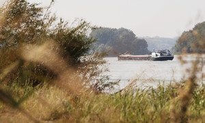 Cargo vessel on the Danube